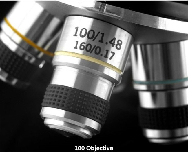 image of Levenhuk 320 Biological Microscope: 100 Objective