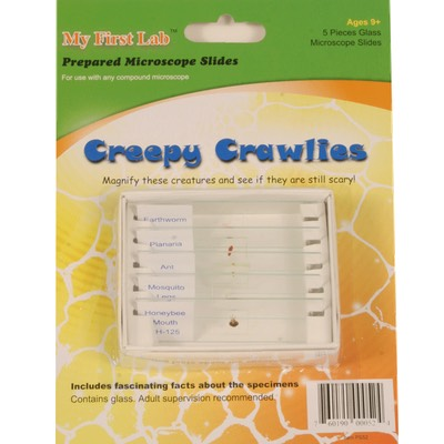 image of PS52 Creepy Crawlies Prepared Slide Set