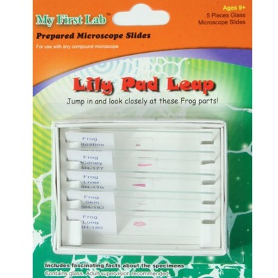 image of PS57 Lily Pad Prepared Slide Set
