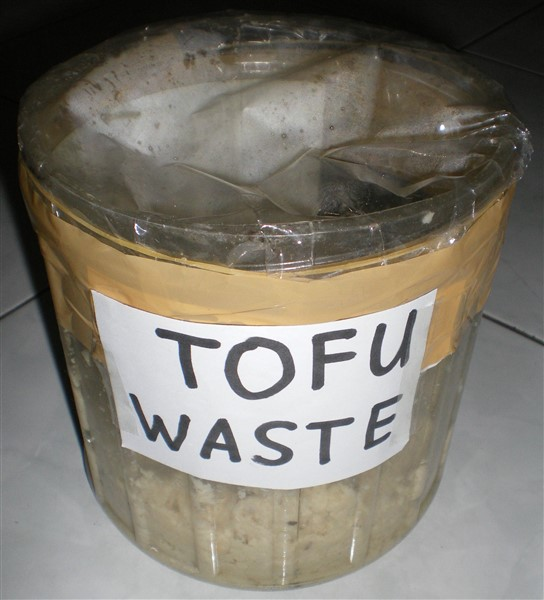 image of bioethanol science fair project tofu waste without water