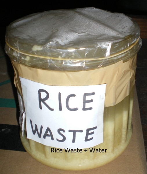 image of bioethanol science fair project rice waste plus water