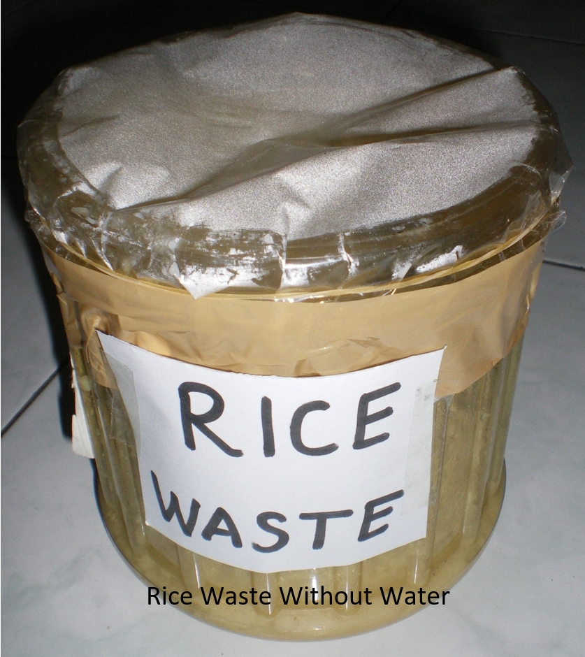 image of bioethanol science fair project rice waste without water