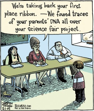 image of role of a parent in science fairs