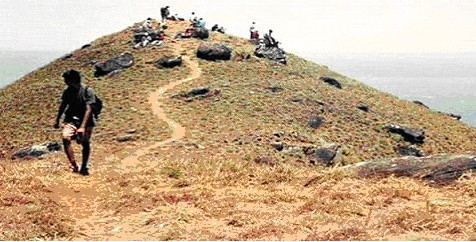 image of science fair project community planting trees at top of mountain in India