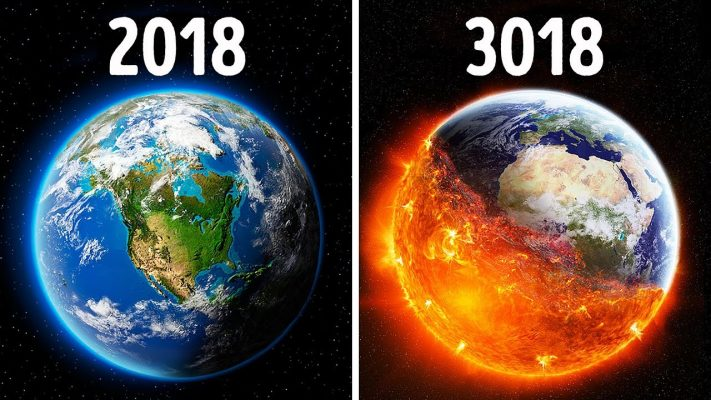 Science Year 2020