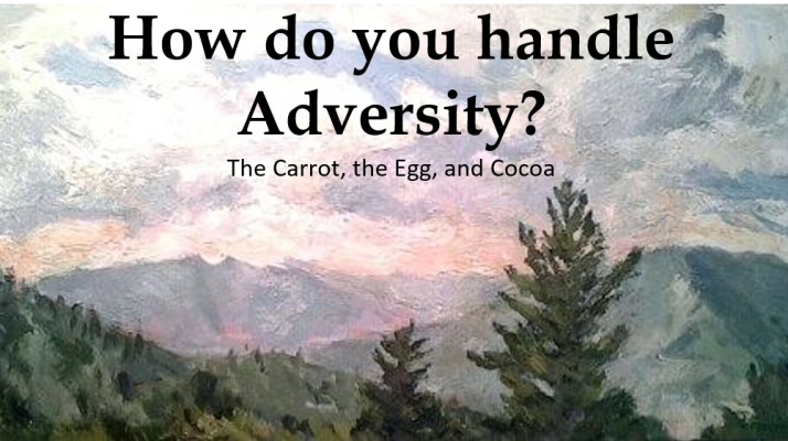 How do you handle adversity?