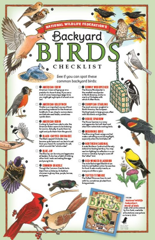 Backyard Bird Checklist