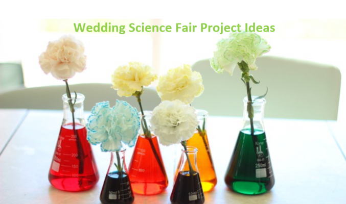 Wedding Science Fir Project Ideas