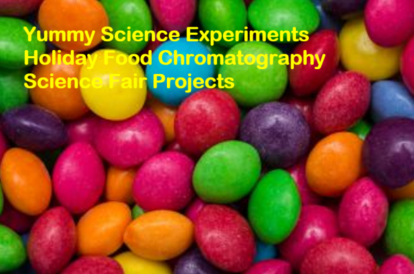 Holiday Food Chromatography Science Fair Projects