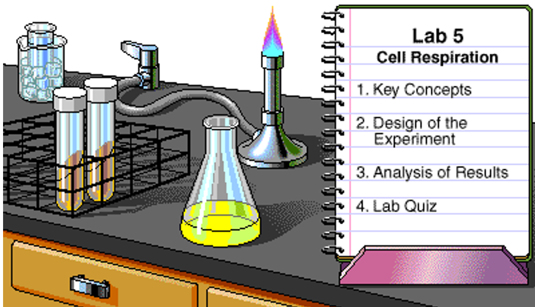 Biology Lab Tip on Cell Respiration