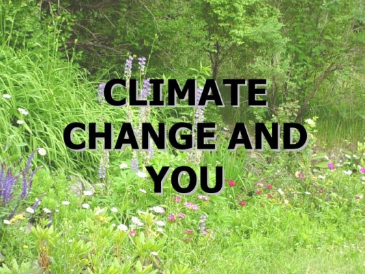 You Can Help To Combat Climate Change