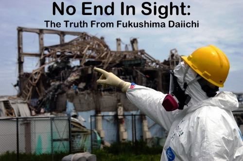 The Fukushima Reactor