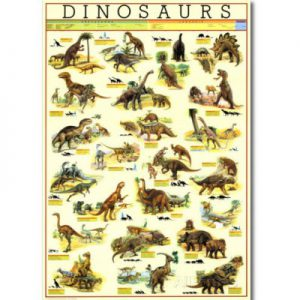 image of palentology educational posters
