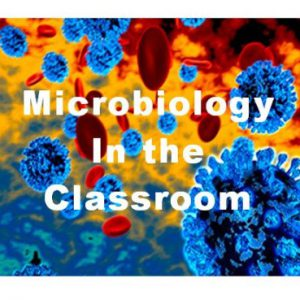 Classroom Microbiology Safe Experiment Kits & Supplies