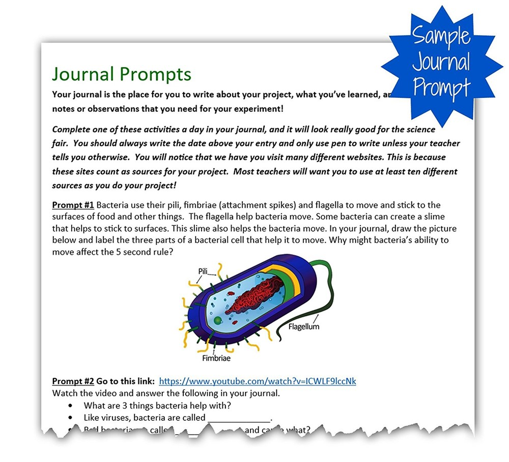 5 Second Rule Science Fair Project Kit Journal Prompts