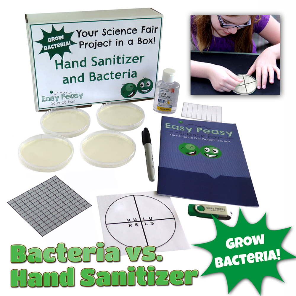 Hand Sanitizer vs Bacteria Science Fair Project