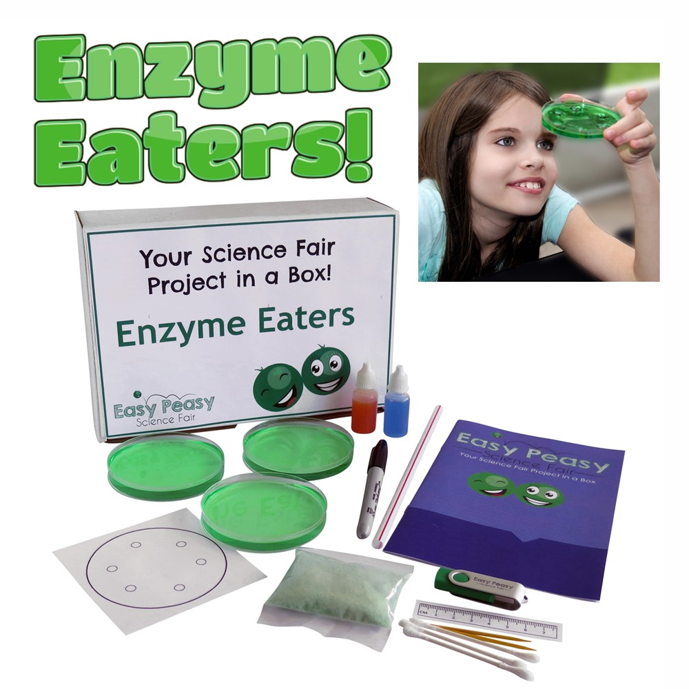 Enzyme Eaters Laundry Detergent Experiment Science Fair Project Kit