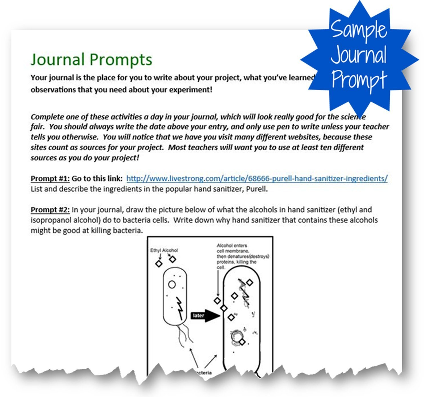 Sanitizers and Bacteria Science Fair Project Kit Journal
