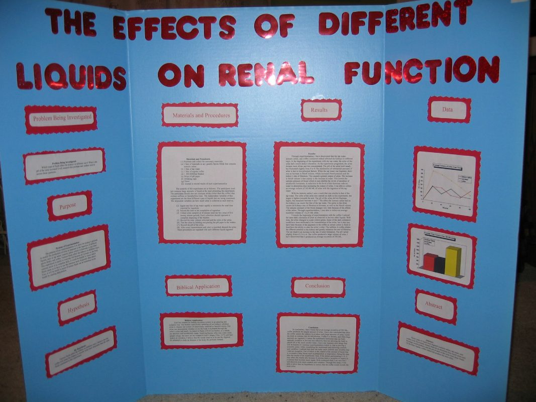 The Effects of Different Liquids on Renal Function Science Fair Abstract