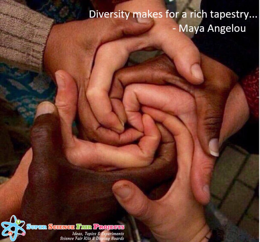 Diversity Tapestry