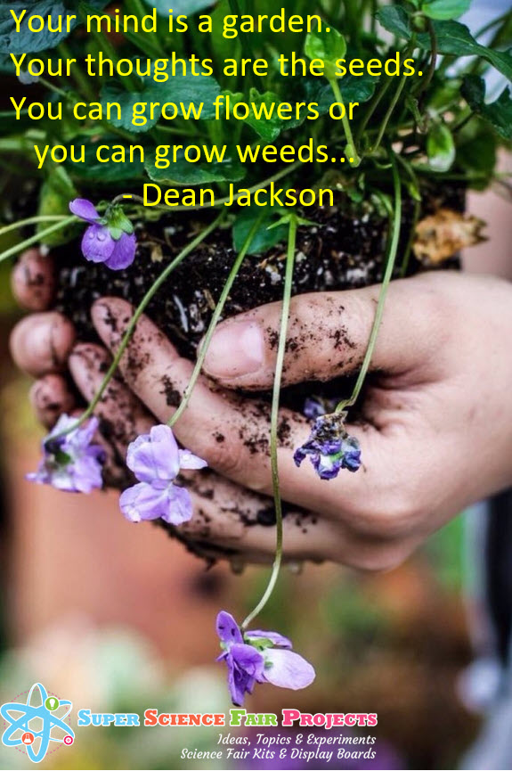 Does Your Mind Grow Flowers or Seeds