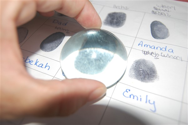 Are Fingerprints Inherited Science Fair Abstract