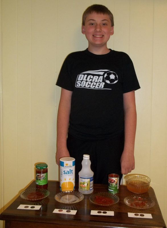 Taco Sauce Science Fair Project
