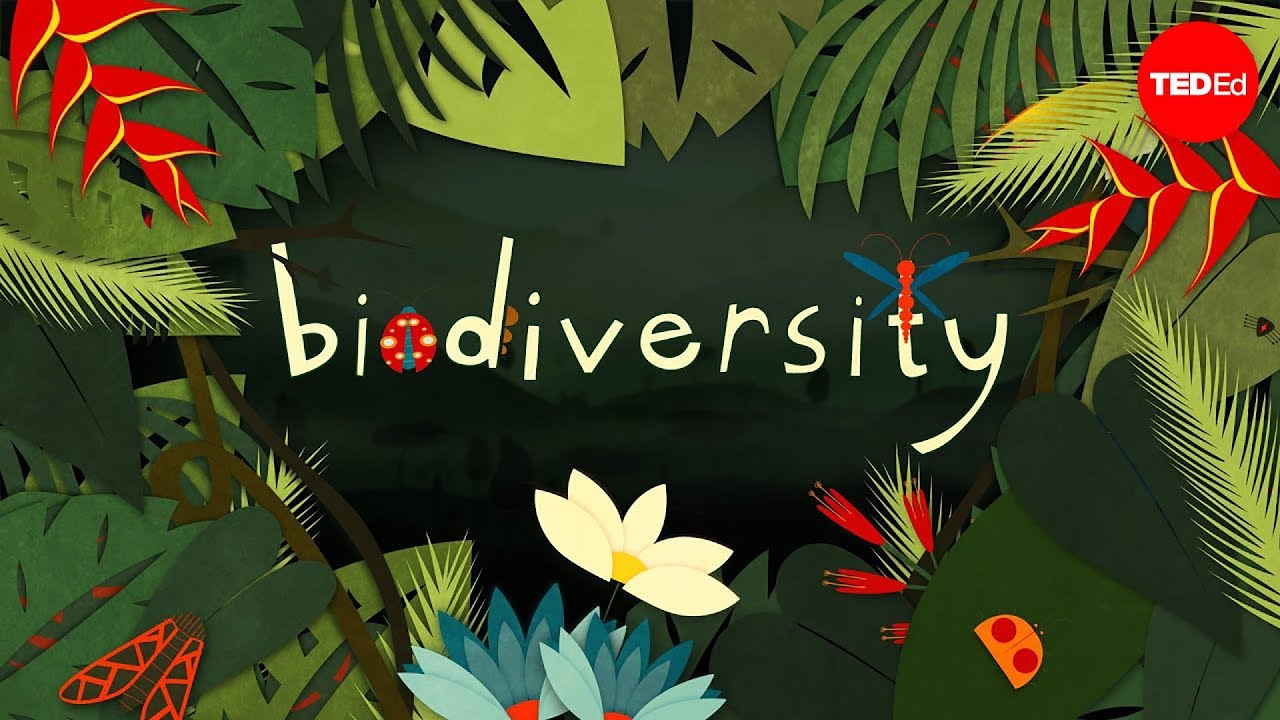 Biodiversity Science Fair Project Survey