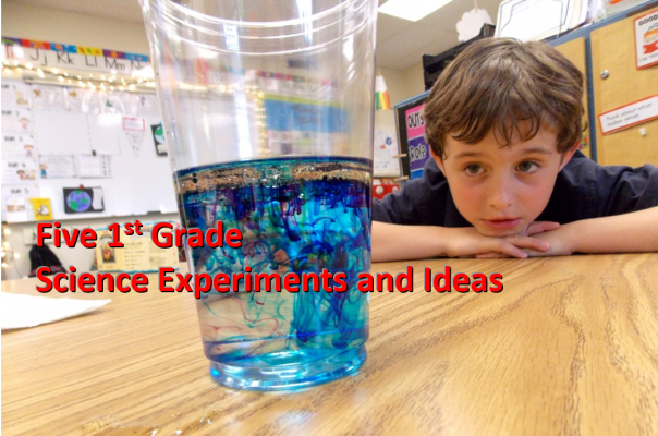 Five 1st Grade Science Experiments and Ideas