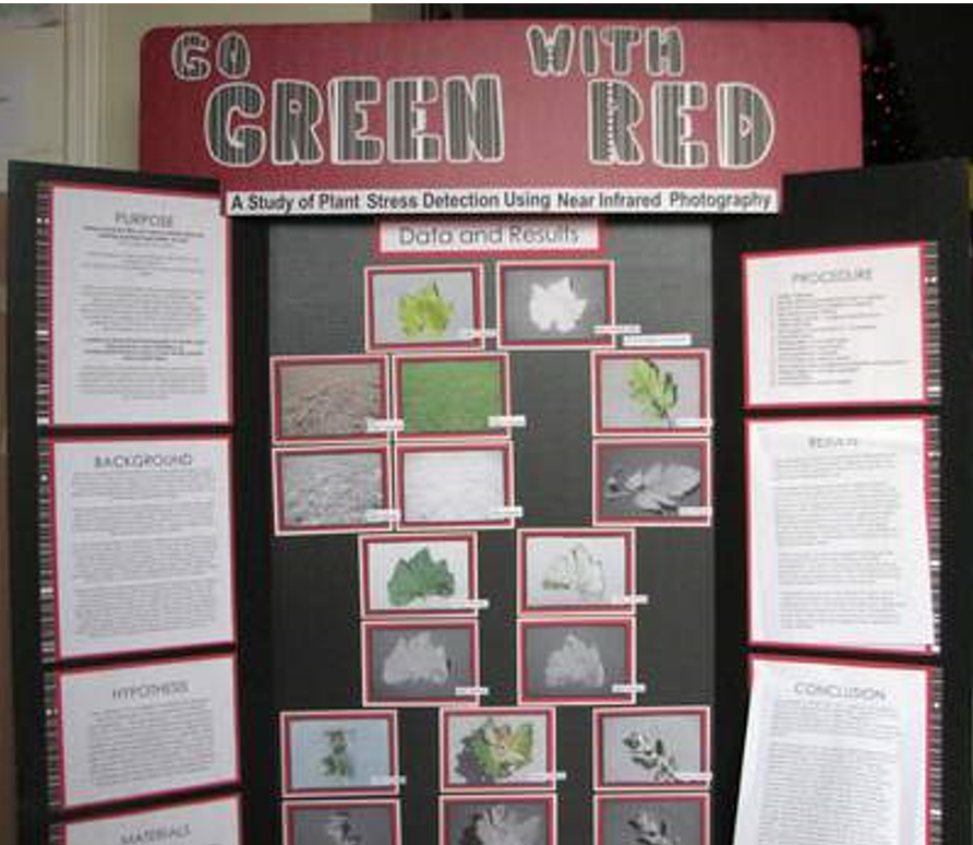 Digital Photography Science Fair Project