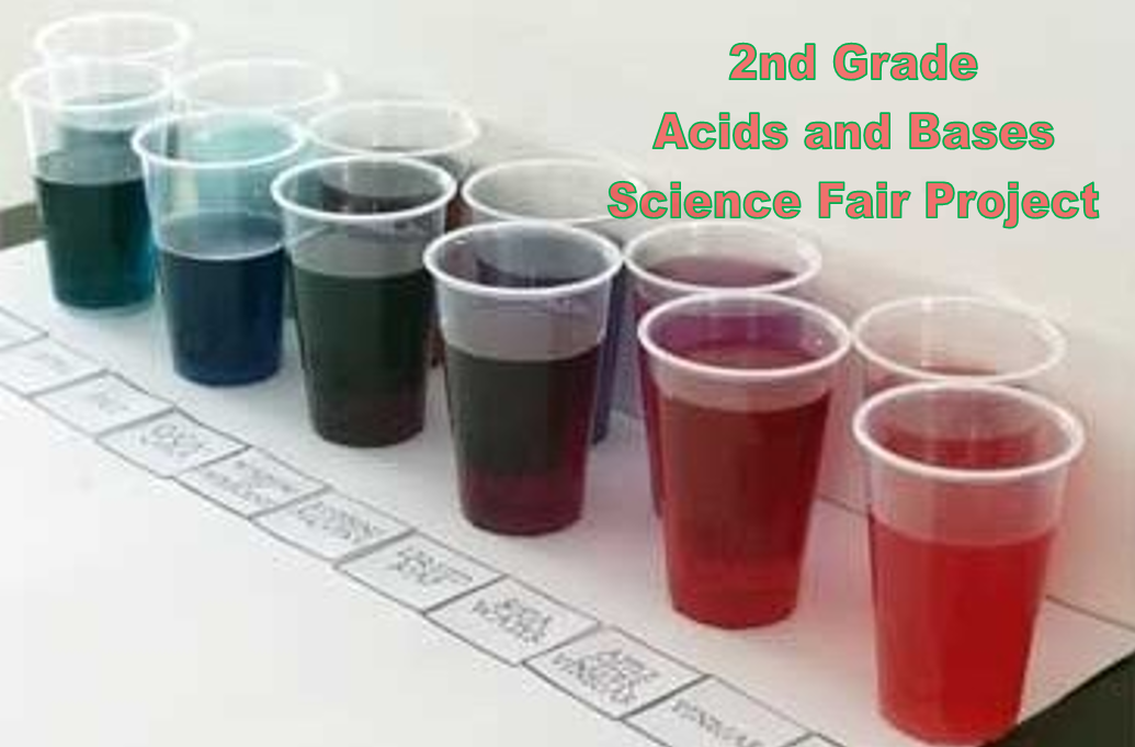2nd Grade Acids and Bases Science Fair Project