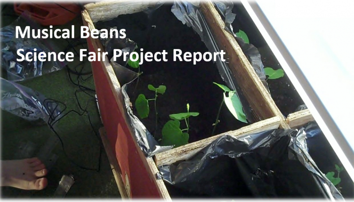 Musical Beans Science Fair Projects