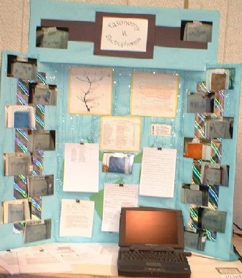taxonomic relationships using protein electrophoresis science fair project